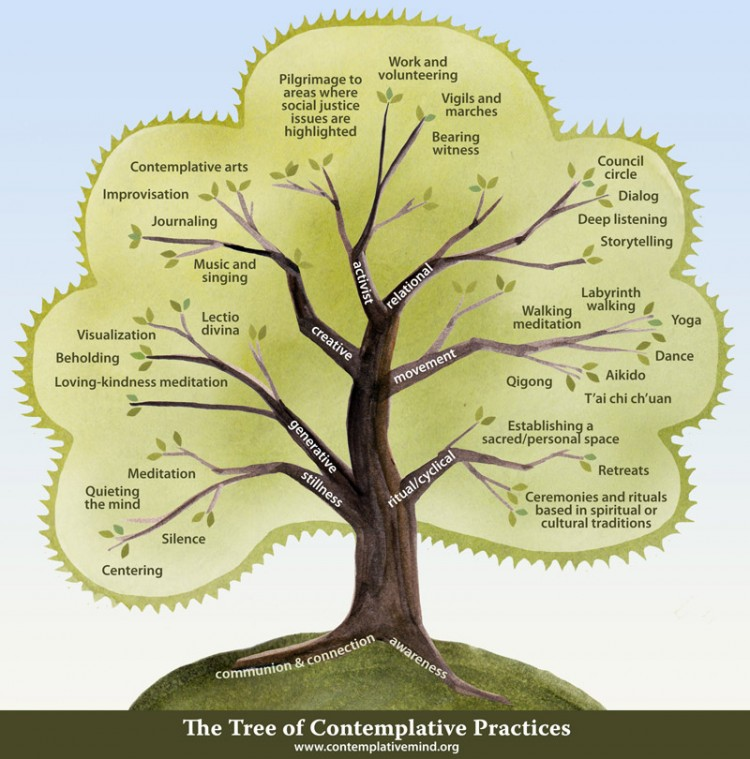 The Tree of Contemplative Practices from the Center for Contemplative Mind in Society. Concept & design by Maia Durr; illustration by Carrie Bergman.